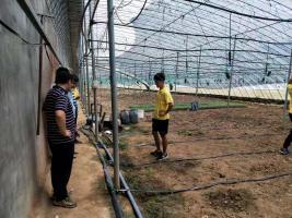 山东华胜——日照市温室大棚实现全自动水肥一体化灌溉项目已完成验收
