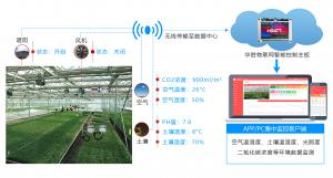 应用温室大棚自动化是大棚管理好的关键 快来了解一下!
